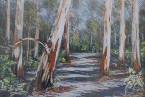 Boranup Forest (Western Australia)