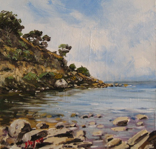 Shelley Beach 200x200mm Oil on Board $250 2015