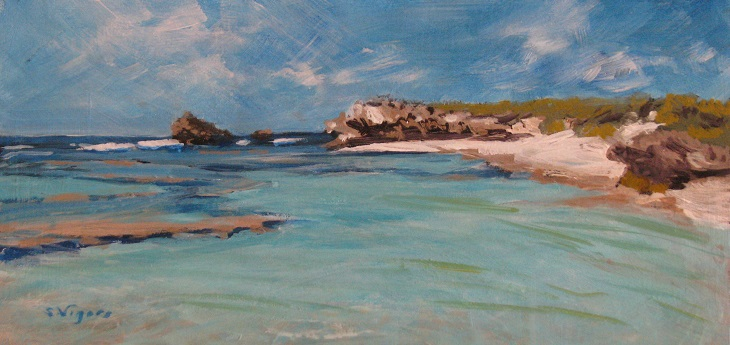 Strickland Bay Rottnest 150x300mm Acrylic on Board $250 2015